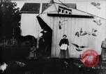 Image of Farmyard scene New Jersey United States USA, 1896, second 4 stock footage video 65675071515