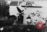 Image of Farmyard scene New Jersey United States USA, 1896, second 5 stock footage video 65675071515