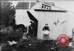 Image of Farmyard scene New Jersey United States USA, 1896, second 9 stock footage video 65675071515