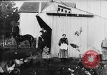 Image of Farmyard scene New Jersey United States USA, 1896, second 12 stock footage video 65675071515