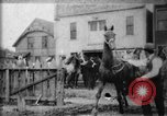 Image of stockyard Buffalo New York USA, 1897, second 3 stock footage video 65675071528