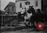 Image of stockyard Buffalo New York USA, 1897, second 7 stock footage video 65675071528