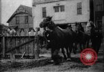 Image of stockyard Buffalo New York USA, 1897, second 11 stock footage video 65675071528