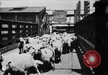Image of Chicago stockyards Chicago Illinois USA, 1897, second 8 stock footage video 65675071534