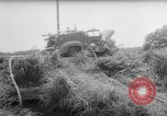 Image of drought Japan, 1958, second 11 stock footage video 65675071621