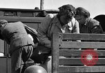 Image of liberated orphan children from Buchenwald Concentration Camp Buchenwald Germany, 1945, second 10 stock footage video 65675071632