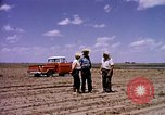 Image of agriculture United States USA, 1956, second 3 stock footage video 65675071651