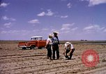 Image of agriculture United States USA, 1956, second 5 stock footage video 65675071651