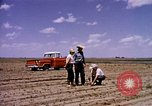 Image of agriculture United States USA, 1956, second 6 stock footage video 65675071651