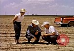 Image of agriculture United States USA, 1956, second 10 stock footage video 65675071651