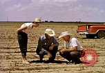 Image of agriculture United States USA, 1956, second 12 stock footage video 65675071651