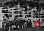 Image of rodeo Sun Valley Idaho USA, 1939, second 11 stock footage video 65675071717