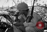 Image of 158th Infantry 2nd Battalion Arawe New Britain, 1943, second 12 stock footage video 65675071777