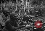 Image of 158th Infantry 2nd Battalion Arawe New Britain, 1943, second 1 stock footage video 65675071780