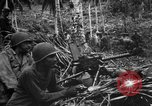 Image of 158th Infantry 2nd Battalion Arawe New Britain, 1943, second 2 stock footage video 65675071780