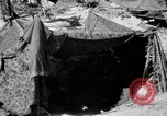 Image of communication activities Peleliu Palau Islands, 1945, second 5 stock footage video 65675071785