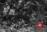 Image of communication activities Peleliu Palau Islands, 1945, second 6 stock footage video 65675071792