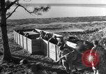 Image of training European Theater, 1946, second 11 stock footage video 65675071823