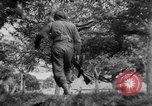 Image of Allied troops France, 1944, second 11 stock footage video 65675072017