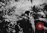 Image of OSS interrogate Japanese Burma, 1944, second 3 stock footage video 65675072042
