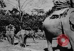 Image of OSS interrogate Japanese Burma, 1944, second 8 stock footage video 65675072042