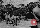 Image of OSS interrogate Japanese Burma, 1944, second 9 stock footage video 65675072042