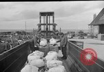 Image of combat cargo Japan, 1951, second 3 stock footage video 65675072151