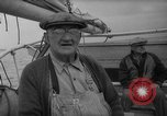 Image of oyster fishing New Jersey United States USA, 1946, second 12 stock footage video 65675072232