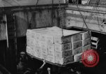 Image of Surplus food distributed for starving East Germans Germany, 1951, second 11 stock footage video 65675072259