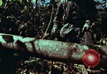 Image of survival techniques Philippines, 1968, second 11 stock footage video 65675072401