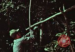 Image of survival techniques Philippines, 1968, second 12 stock footage video 65675072403