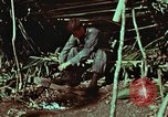 Image of survival techniques Philippines, 1968, second 3 stock footage video 65675072404