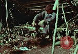 Image of survival techniques Philippines, 1968, second 8 stock footage video 65675072404