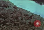 Image of survival techniques Philippines, 1968, second 8 stock footage video 65675072405