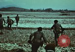 Image of survival techniques Philippines, 1968, second 10 stock footage video 65675072407