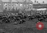Image of American airmen exercise and calisthenics World War I London England United Kingdom, 1917, second 11 stock footage video 65675072433