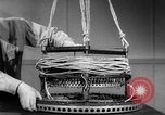 Image of Japanese paper balloon Pacific Theater, 1945, second 3 stock footage video 65675072439