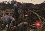 Image of recovery of LB-7 aircraft Bluefields Nicaragua, 1969, second 5 stock footage video 65675072638