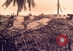 Image of Battle of Tarawa Tarawa Gilbert Islands, 1943, second 5 stock footage video 65675072664