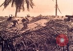 Image of Battle of Tarawa Tarawa Gilbert Islands, 1943, second 6 stock footage video 65675072664