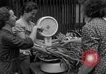 Image of German civilians Stuttgart Germany, 1945, second 11 stock footage video 65675072768