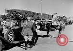 Image of Sultan Sidi Mohammed Morocco North Africa, 1944, second 10 stock footage video 65675072995