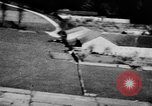 Image of Allied Invasion France, 1944, second 1 stock footage video 65675073007