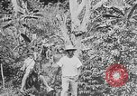 Image of United States Marines Haiti West Indies, 1924, second 2 stock footage video 65675073269