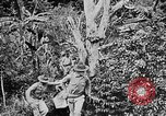 Image of United States Marines Haiti West Indies, 1924, second 11 stock footage video 65675073269