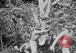Image of United States Marines Haiti West Indies, 1924, second 12 stock footage video 65675073269