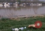 Image of Anacostia River Washington DC USA, 1970, second 8 stock footage video 65675073320