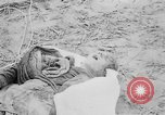 Image of mass burial Gardelegen Germany, 1945, second 9 stock footage video 65675073349