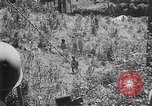 Image of Filipino soldiers Baguio Philippine Islands, 1945, second 7 stock footage video 65675073351