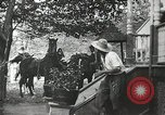 Image of Civil war drama United States USA, 1902, second 8 stock footage video 65675073389